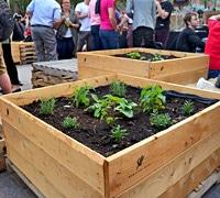 potager-urbain-jardins-gamelin - Jardiniers Professionnels
