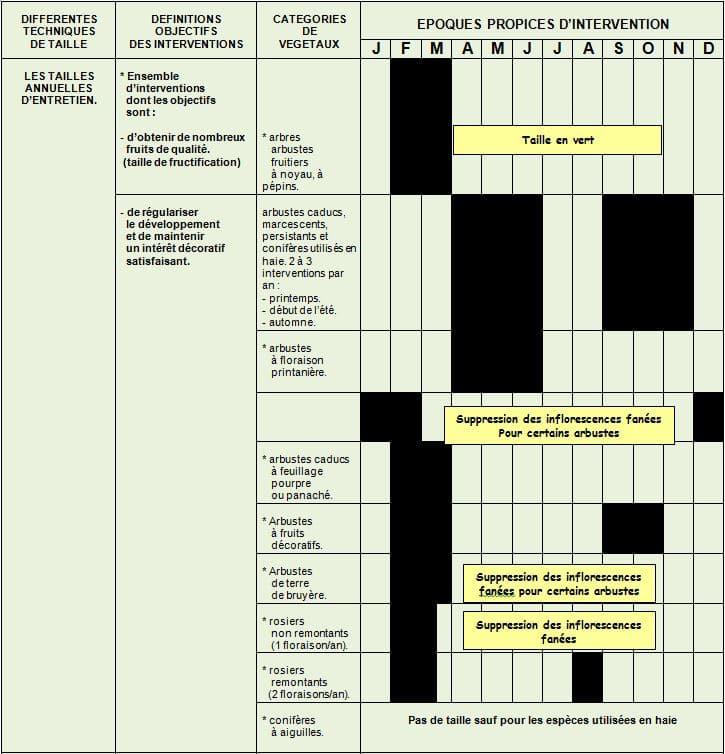tableau-taille-annuelles - Professionnels A Domicile