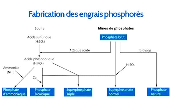 shéma-fabrication-engrais-phosphorés