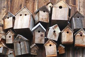 nichoir-oiseau-terrasse - Jardiniers Professionnels