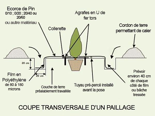schema-coupe-transversale-paillage - Professionnels A Domicile