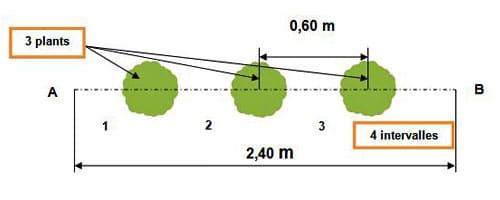 calcul-intervalles-distances-densités-plantations