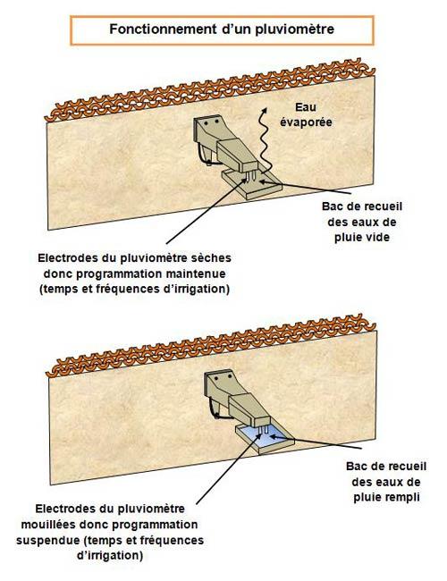 arrosage/fonctionnement-pluviometre - Professionnels A Domicile