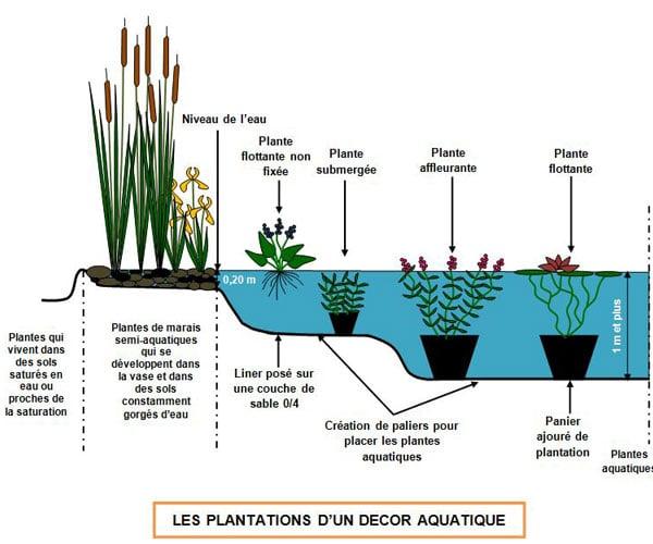 plantation d'un décor aquatique - Professionnels A Domicile