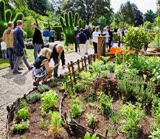 graines de jardin à Rouen Normandie - Jardiniers Professionnels