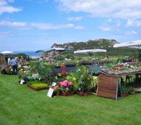 évènement voyage des plante à Plougasnou juillet 2016 - Jardiniers Professionnels