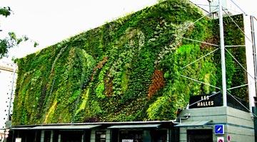 mur végétal halles d'Avignon ; parcs et jardins contemporains depuis 1980 - Professionnels A Domicile
