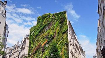 oasis Aboukir à Paris - mur végétal ; parcs et jardins contemporains depuis 1980 - Professionnels A Domicile