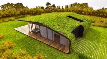 toit végétal ou toiture végétalisée ou éco toit ; parcs et jardins contemporains depuis 1980 - Professionnels A Domicile