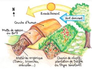 Un potager sur bute | Jardiniers Professionnels