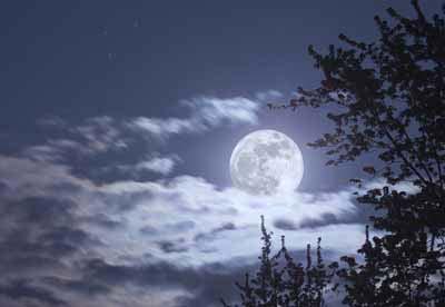 Cultiver avec la Lune - Jardinage avec la Lune
