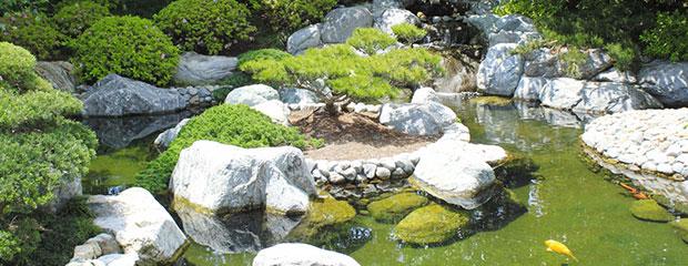 Elements Typiques Jardins Japonais - Jardiniers Professionnels