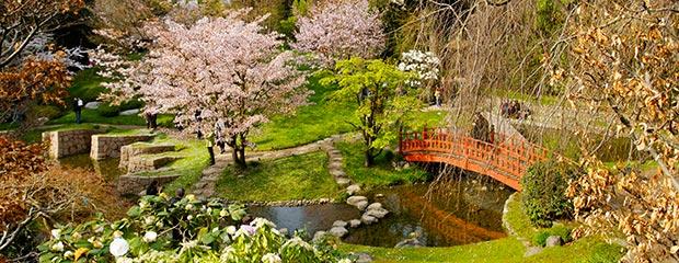 Les diff rents types de jardins japonais jardiniers for Jardins de jardiniers