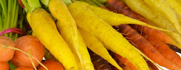 Mini-Legumes - Jardiniers Professionnels
