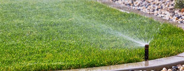 Arrosage Jardin - L'Arrosage d'une pelouse