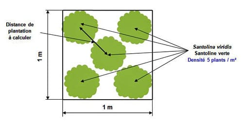 calcul distances plantation densités