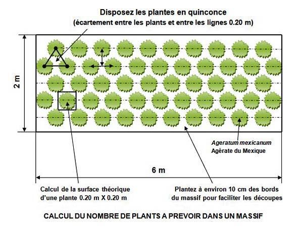 densités plantation calcul nombre plants