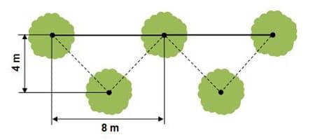 densitsé plantation quinconce écarts différents