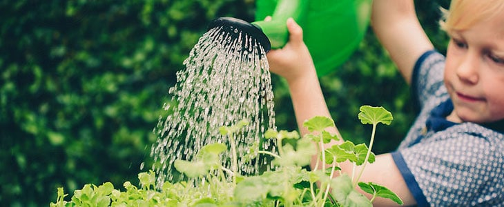 Les conseils des Jardiniers Professionnels pour initier ses enfants au jardinage