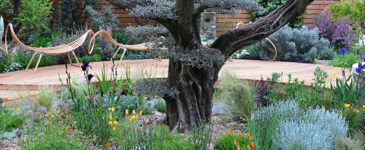 jardiner sous un arbre