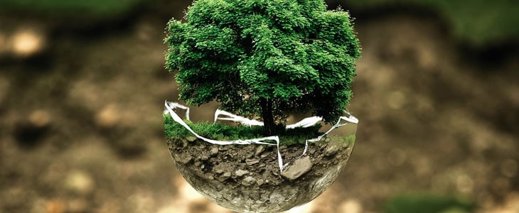 Astuces Ecolos Simples pour le Jardin