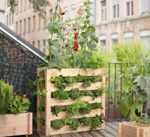 Jardiner sans terrain