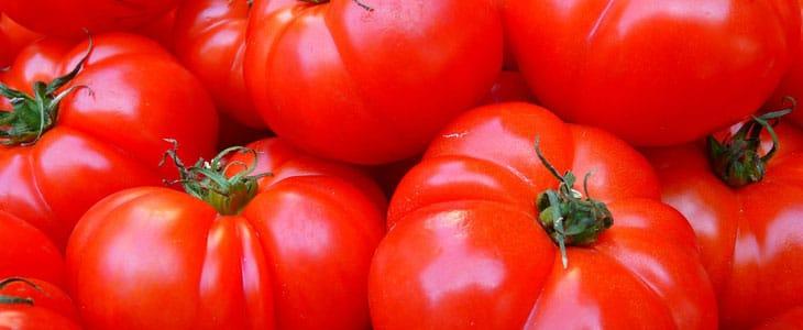 Faire Mûrir les Tomates