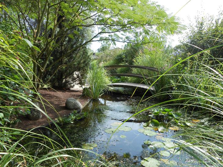 en tretien de bassin de jardin en automne