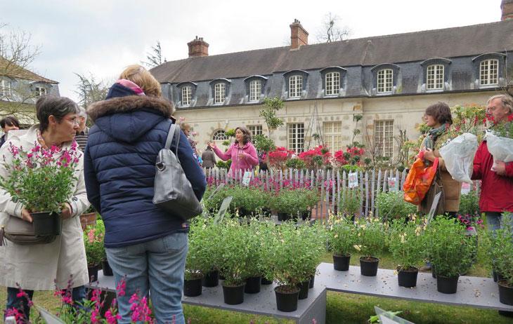 Fête des plantes Domaine de Saint Jean de Beauregard