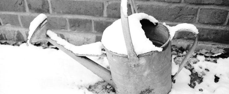 arrosage en hiver