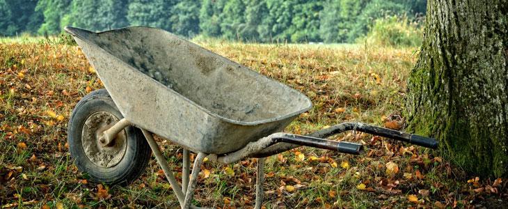 outils de jardinage pour l'hiver
