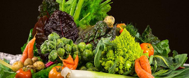 Potager En Hiver Légumes