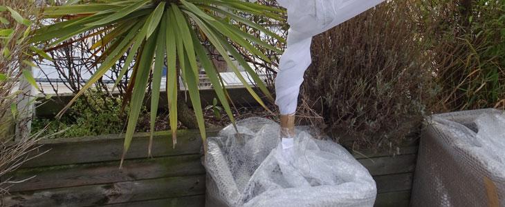 Protéger les Pots Contre Le Gel - Faire Hiverner vos Plantes En Pots