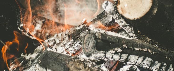 Cendre de Bois au Jardin - Cendres de Bois