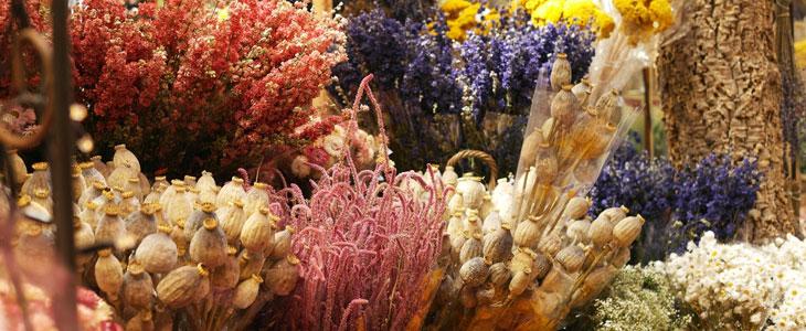 faire sécher les fleurs