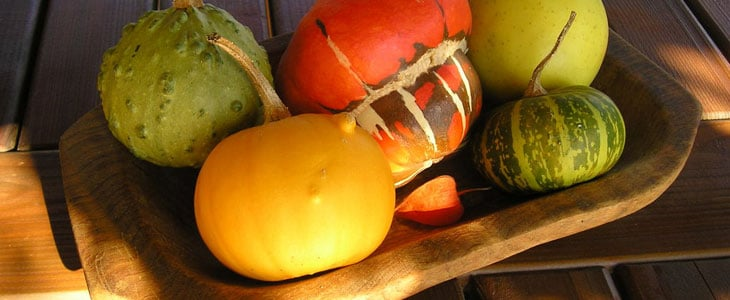 fruits et légumes récolter en automne