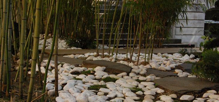 jardin japonais de l'Hôtel d'Heidelbach
