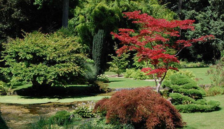jardin japonais du château à Courances