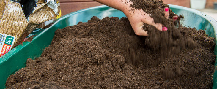 Terreau Pour mes Plantes - Quel terreau Choisir pour Plantes
