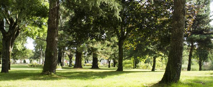 parcs et jardins à visiter dans le nord pas de calais