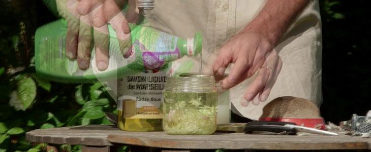 recettes naturelles contre les nuisibles
