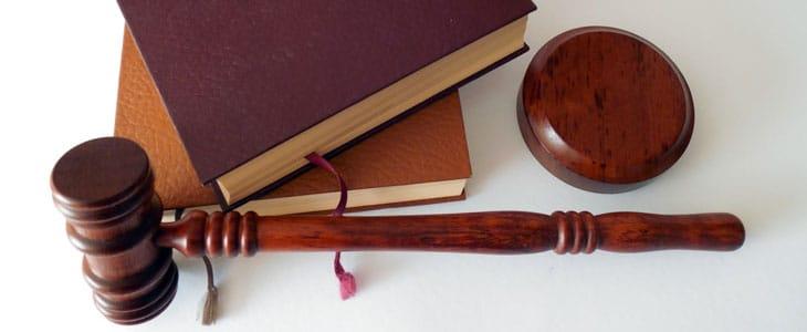 Obligation Légale de Tailler sa Haie - Tailler Haie