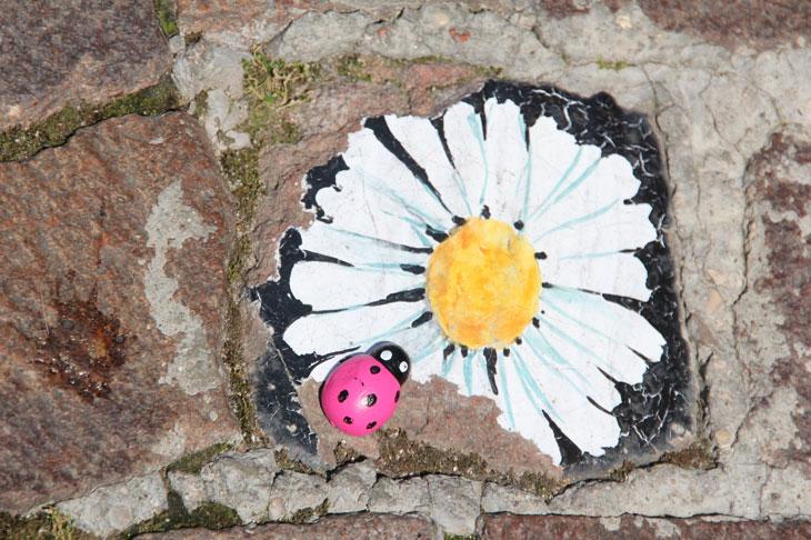 La flore sauvage des rues
