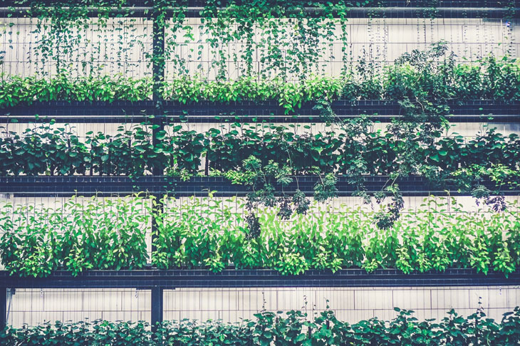 tendance 2019 en aménagement de jardin