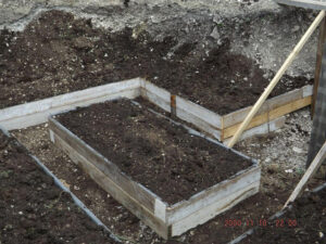 jardinières prêtes à cultiver