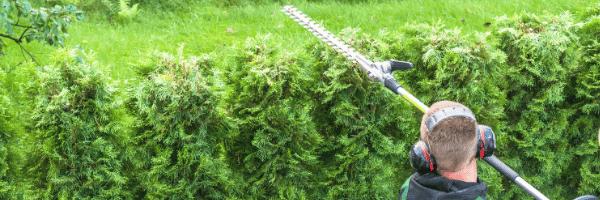 crédit d'impôt jardinage