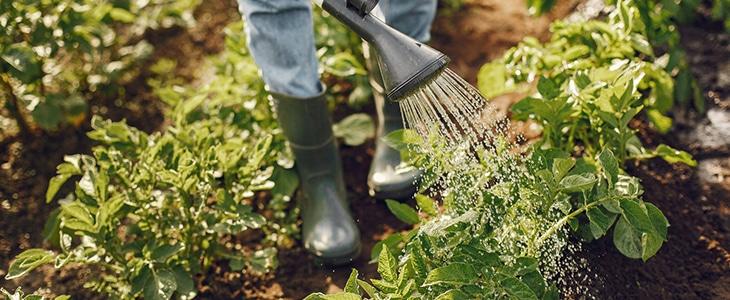 les risques et équipements liés au métier de jardinier paysagiste