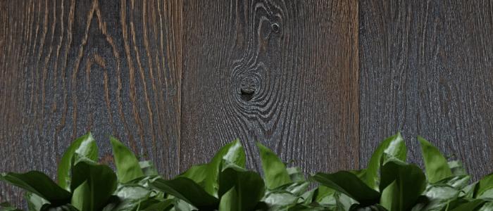 bois brulé espace vert