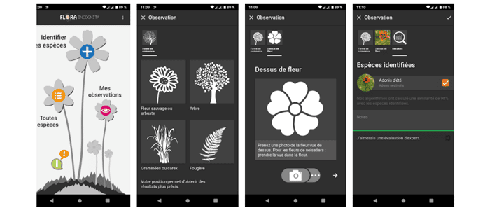 application reconnaissance plante