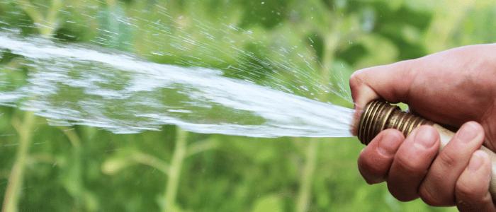 eau jardin economie